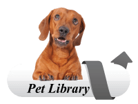 Lakemont Village Veterinary Hospital offers the VIN Client Information Library